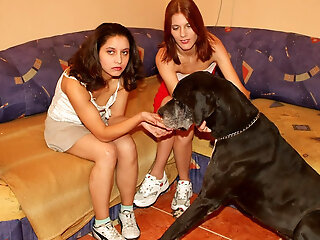 Download Family Dog Sex Viudeos From Private...